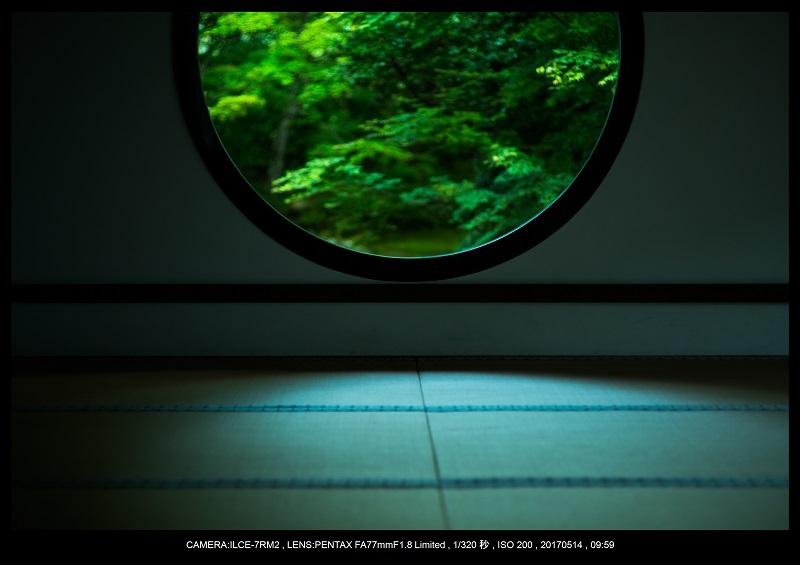 絶景京都・旅行記画像・春の新緑源光庵の丸窓5月12.jpg