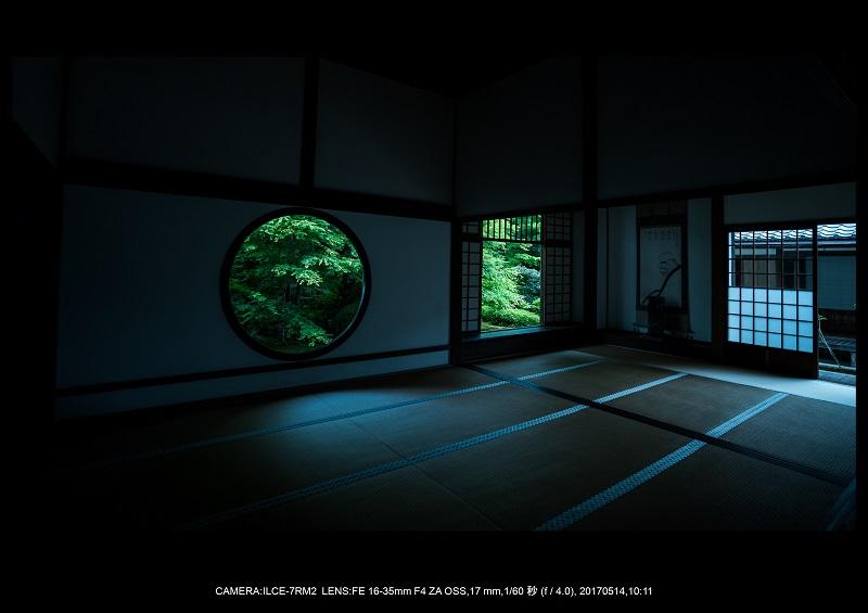 絶景京都・旅行記画像・春の新緑源光庵の丸窓5月20.jpg