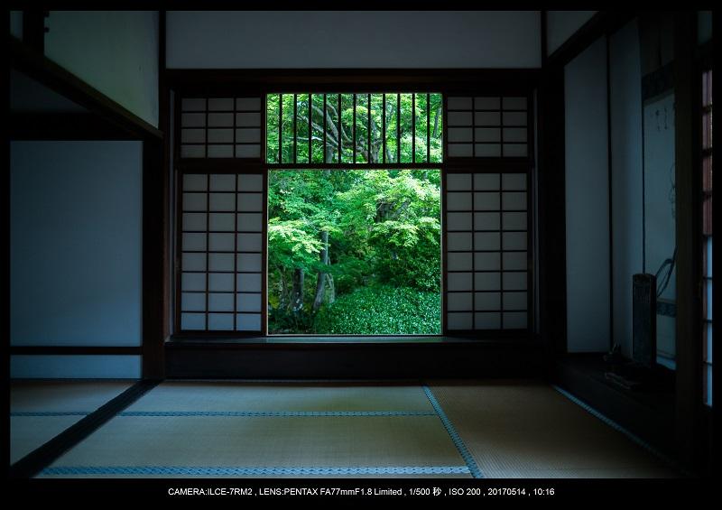絶景京都・旅行記画像・春の新緑源光庵の丸窓5月21.jpg