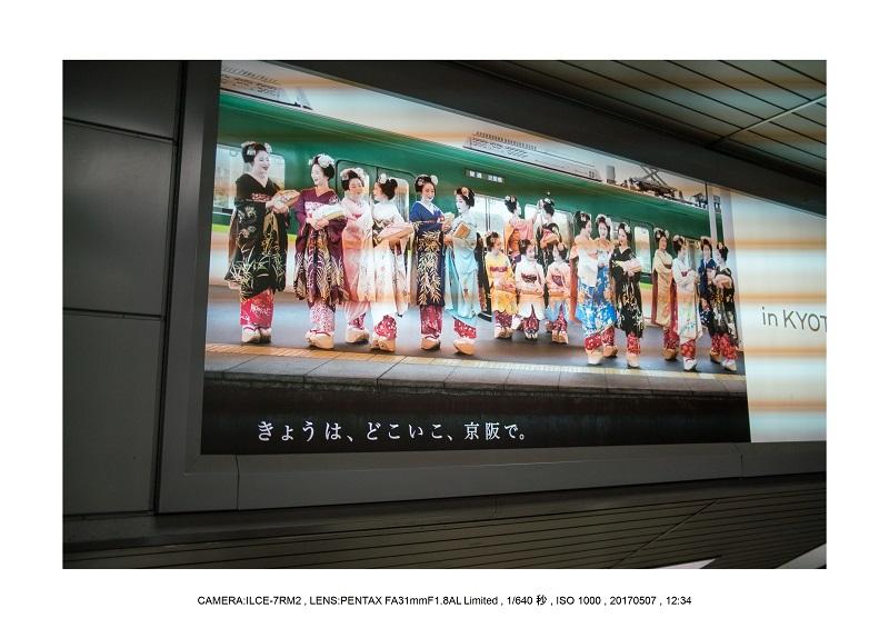 絶景京都・旅行記画像・春の新緑青もみじの圓光寺5月30.jpg