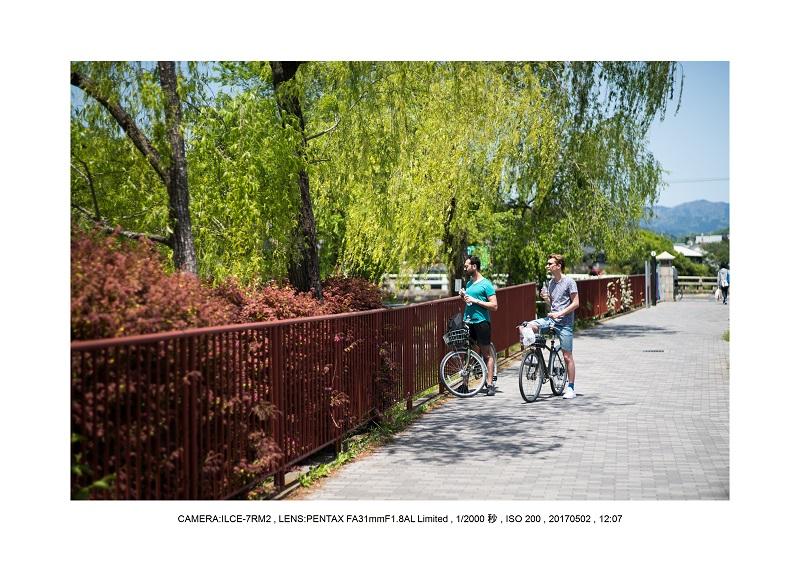 絶景京都・春の新緑青もみじの京都大原三千院画像5月1.jpg