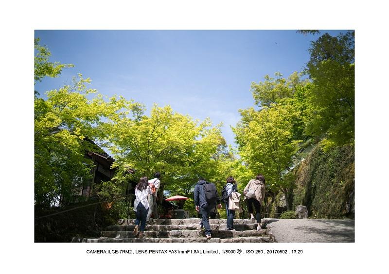 絶景京都・春の新緑青もみじの京都大原三千院画像5月10.jpg