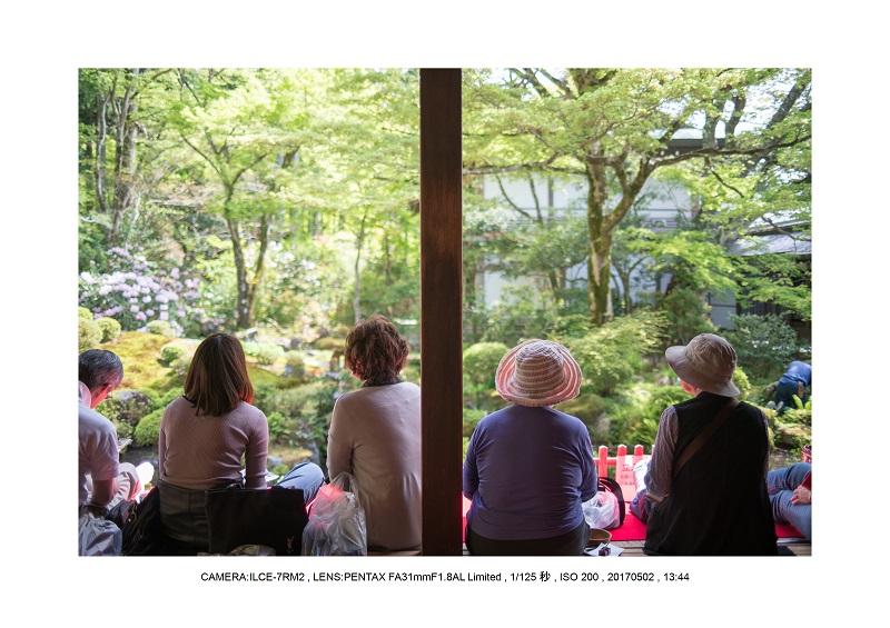 絶景京都・春の新緑青もみじの京都大原三千院画像5月13.jpg