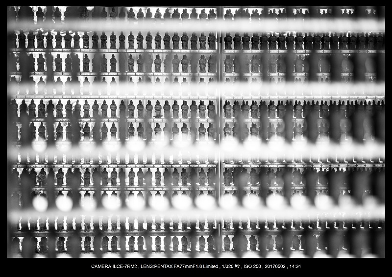 絶景京都・春の新緑青もみじの京都大原三千院画像5月25.jpg