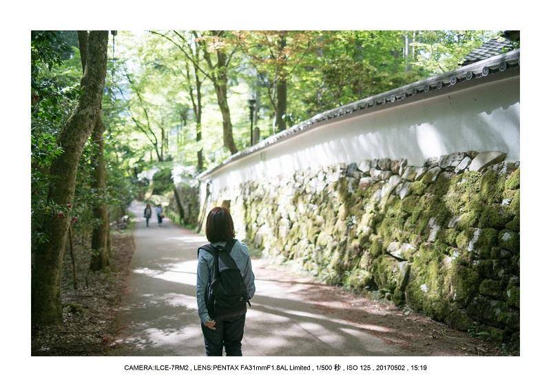 絶景京都・春の新緑青もみじの京都大原三千院画像5月32.jpg