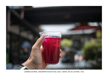 絶景京都・春の新緑青もみじの京都大原三千院画像5月36.jpg