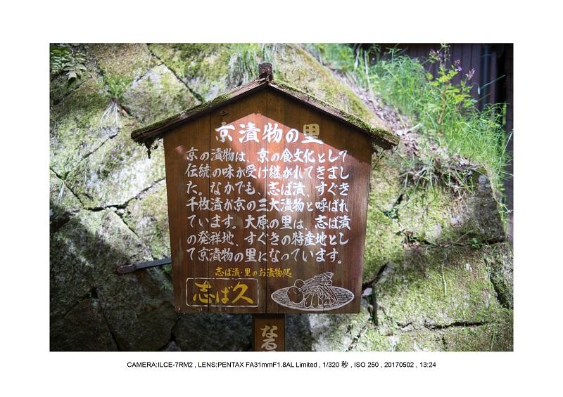 絶景京都・春の新緑青もみじの京都大原三千院画像5月7.jpg
