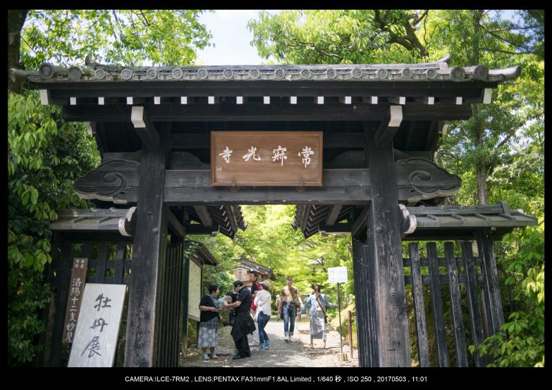 絶景京都・春の新緑青もみじの常寂光寺5月1-0.jpg