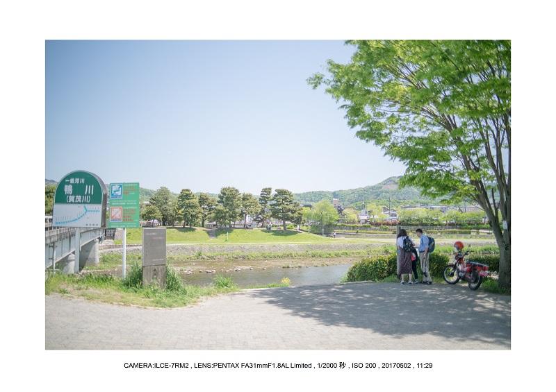 絶景京都・春の新緑青もみじの真如堂5月15.jpg