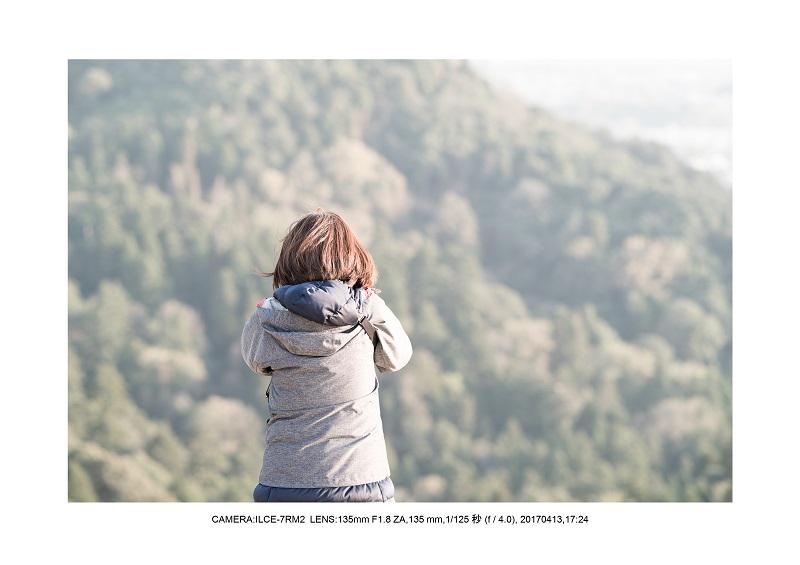 絶景奈良・奈良公園若草山鹿のシルエット桜5.jpg