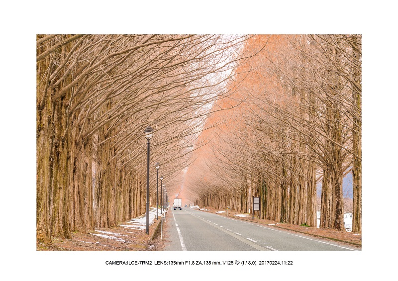 絶海関西・滋賀琵琶湖風景散歩102.jpg