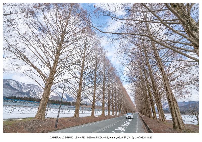 絶海関西・滋賀琵琶湖風景散歩103.jpg
