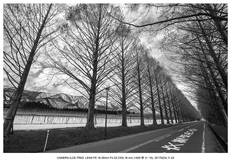 絶海関西・滋賀琵琶湖風景散歩104.jpg