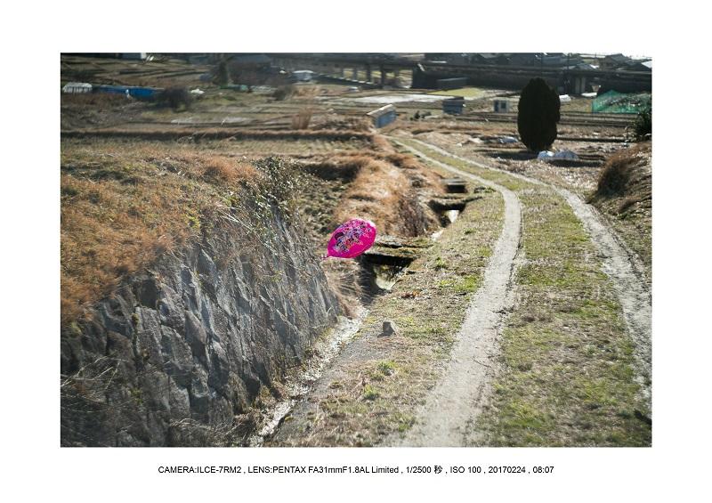 絶海関西・滋賀琵琶湖風景散歩58.jpg