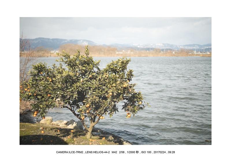 絶海関西・滋賀琵琶湖風景散歩67.jpg