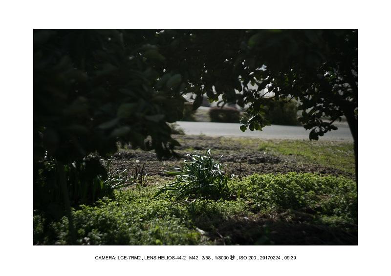絶海関西・滋賀琵琶湖風景散歩72.jpg