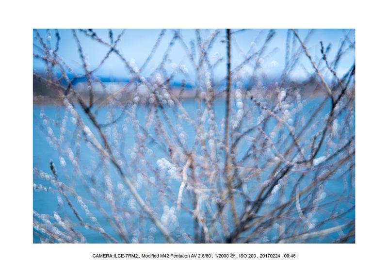 絶海関西・滋賀琵琶湖風景散歩80.jpg