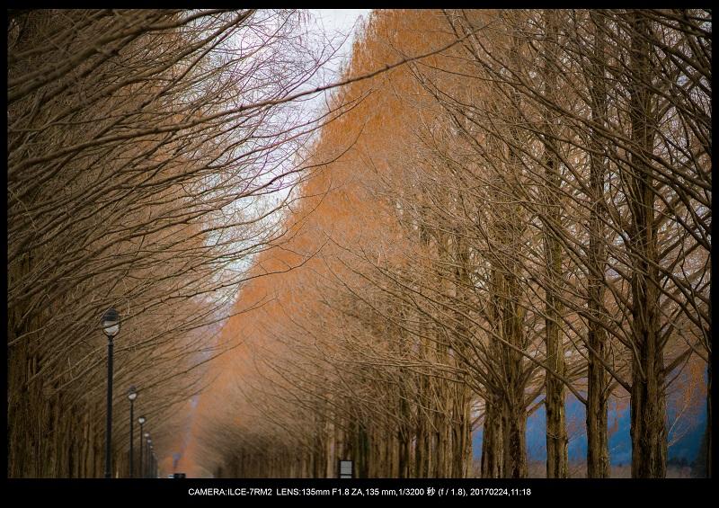 絶海関西・滋賀琵琶湖風景散歩99.jpg