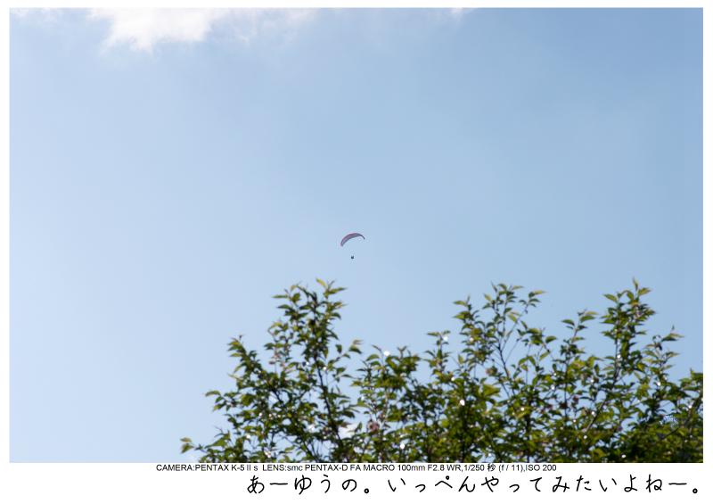 群馬・妙義山11.jpg