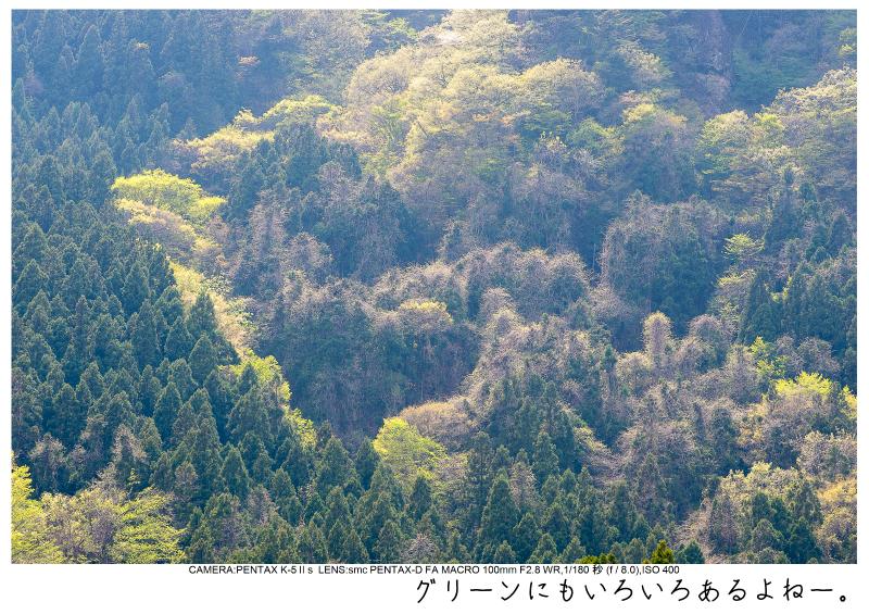 群馬・妙義山4.jpg