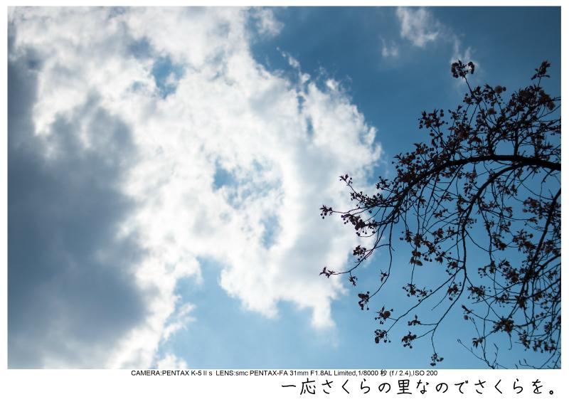 群馬・妙義山7.jpg