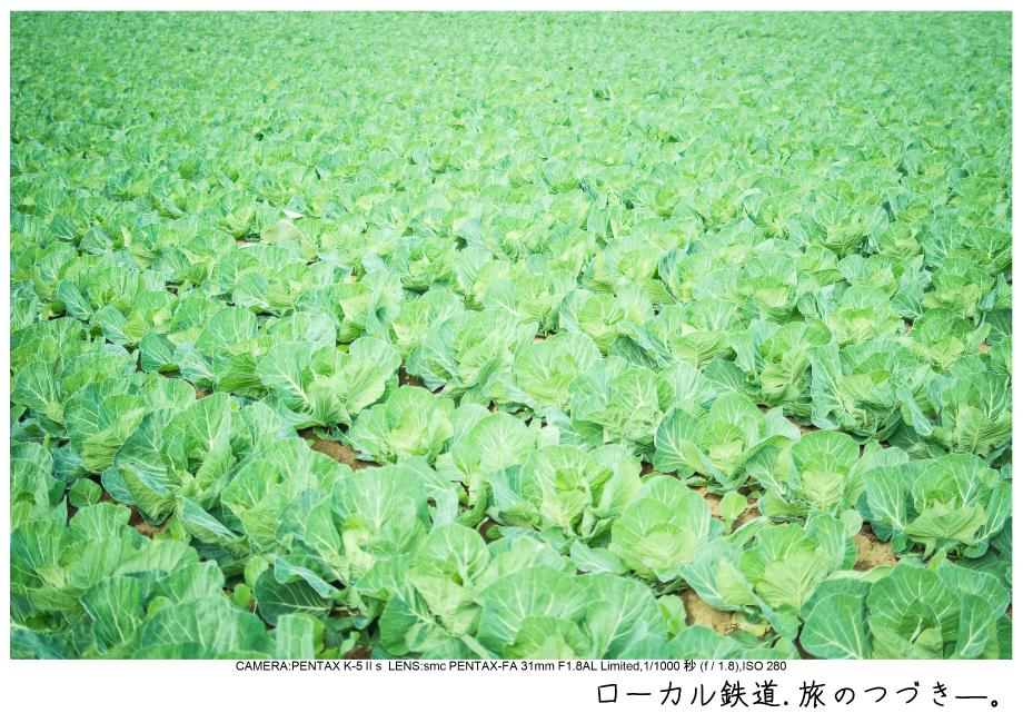 銚子電鉄13.jpg