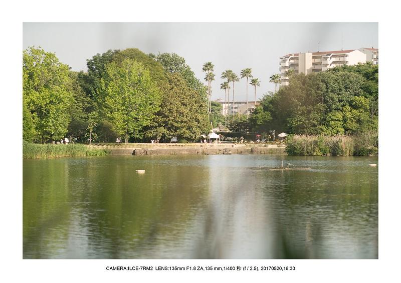 長居植物園170520_28.jpg