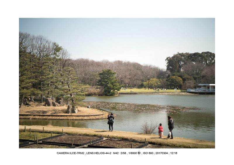 長居植物園20170304_5.jpg
