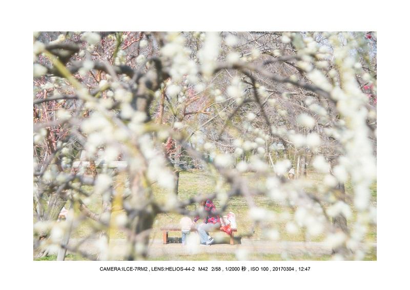 長居植物園20170304_9.jpg