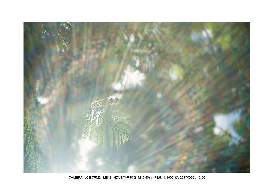 長居植物園20170930 INDUSTAR50-2 M42 50mmF3.5_2.jpg