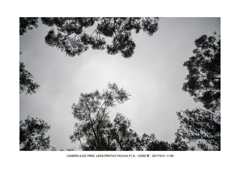 長居植物園20171014_7_PENTAX FA31mm F1.8.jpg