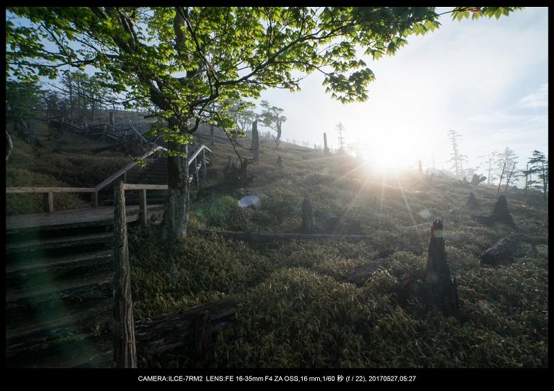 関西の星景スポット大台ケ原で星の風景撮影で天の川31.jpg