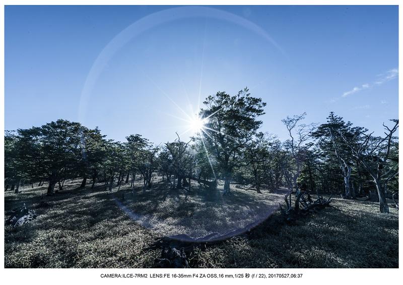 関西の星景スポット大台ケ原で星の風景撮影で天の川37.jpg