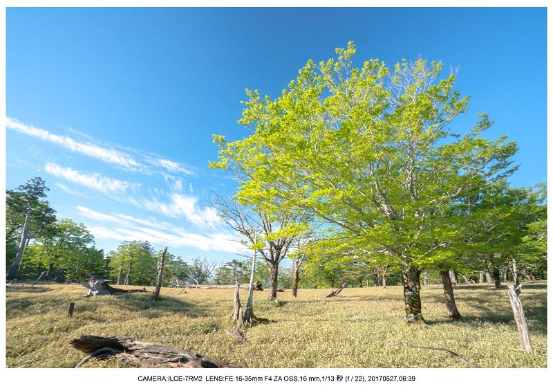 関西の星景スポット大台ケ原で星の風景撮影で天の川39.jpg