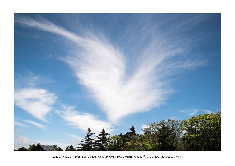 関西の星景スポット大台ケ原で星の風景撮影で天の川60.jpg