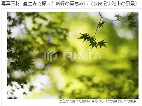 PIXTA5.jpg