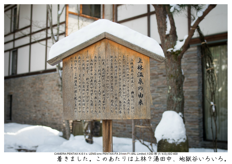 snowmonkey jigokudani11.jpg