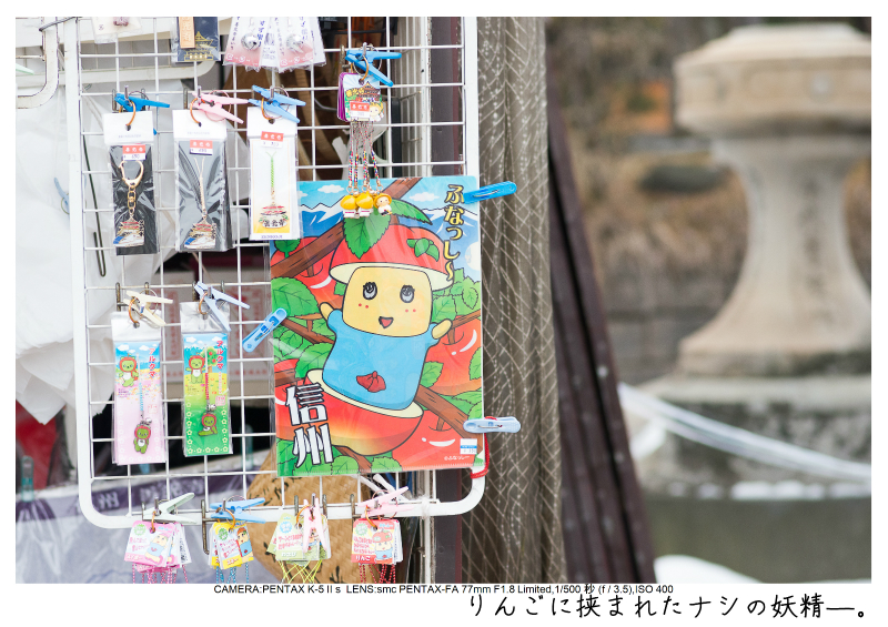 snowmonkey jigokudani140.jpg