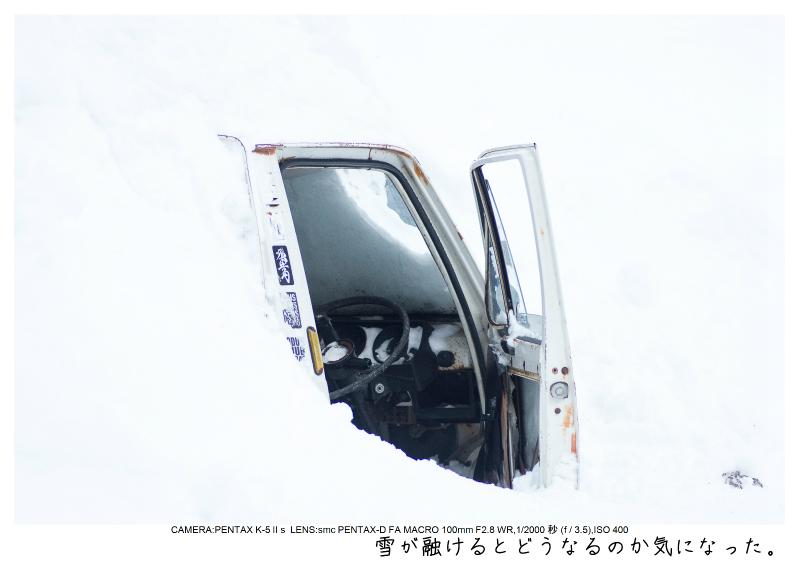 snowmonkey jigokudani27.jpg