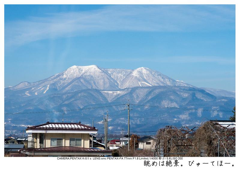 snowmonkey jigokudani3.jpg