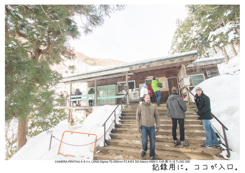 snowmonkey jigokudani66.jpg