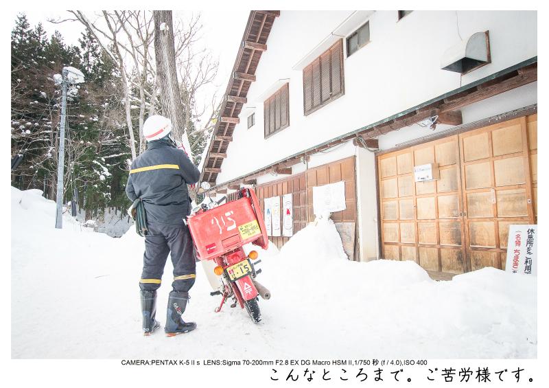 snowmonkey jigokudani68.jpg