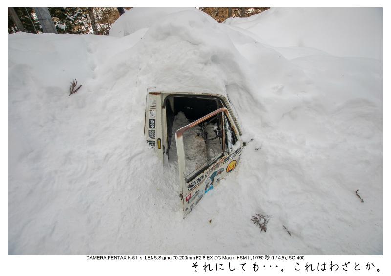snowmonkey jigokudani69.jpg