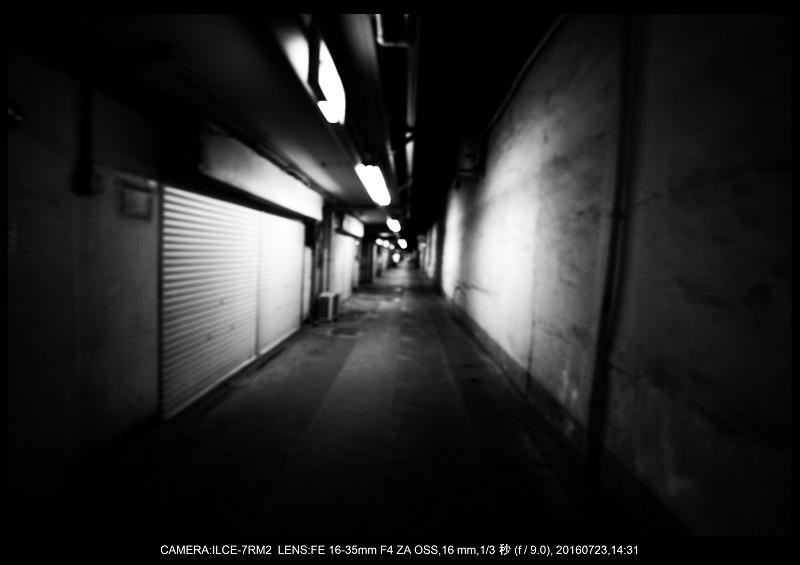 20160723_tokyo8.jpg