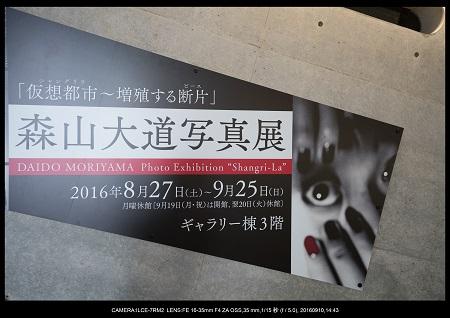 20160910_兵庫県立美術館7.jpg