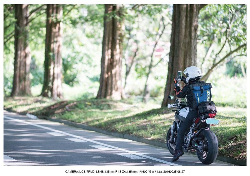 20160925滋賀県・メタセコイヤ並木道1.jpg