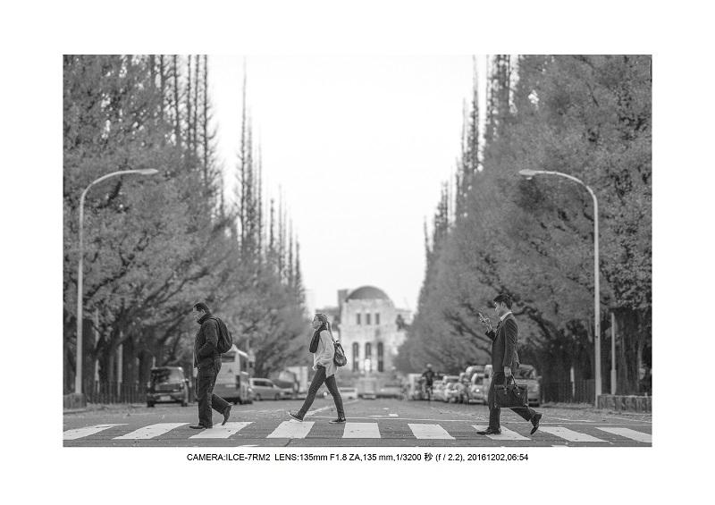 20161202神宮外苑 銀杏並木 絶景 見頃5.jpg