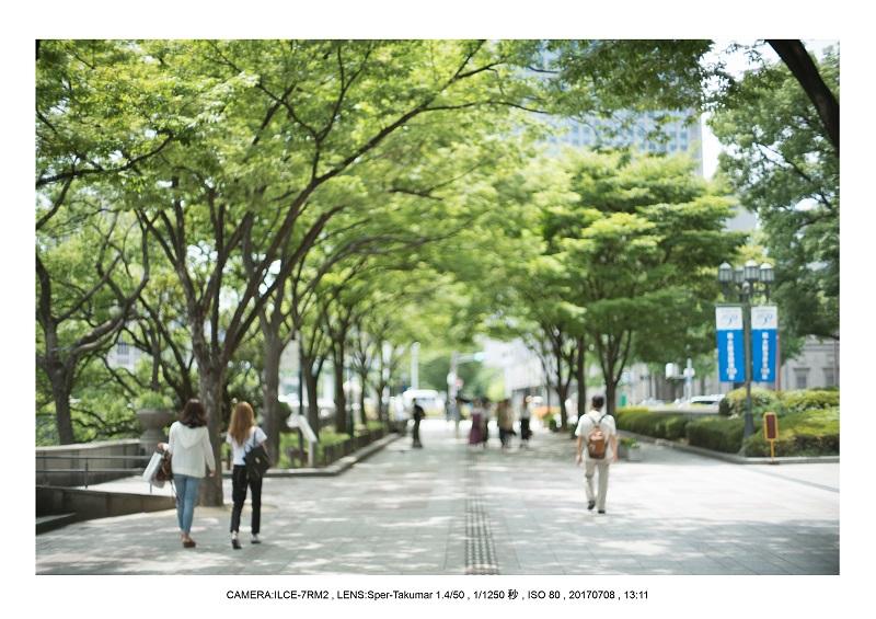 オールドレンズで大阪カメラ散歩(Sper-Takumar 50mm F1.4)14.jpg