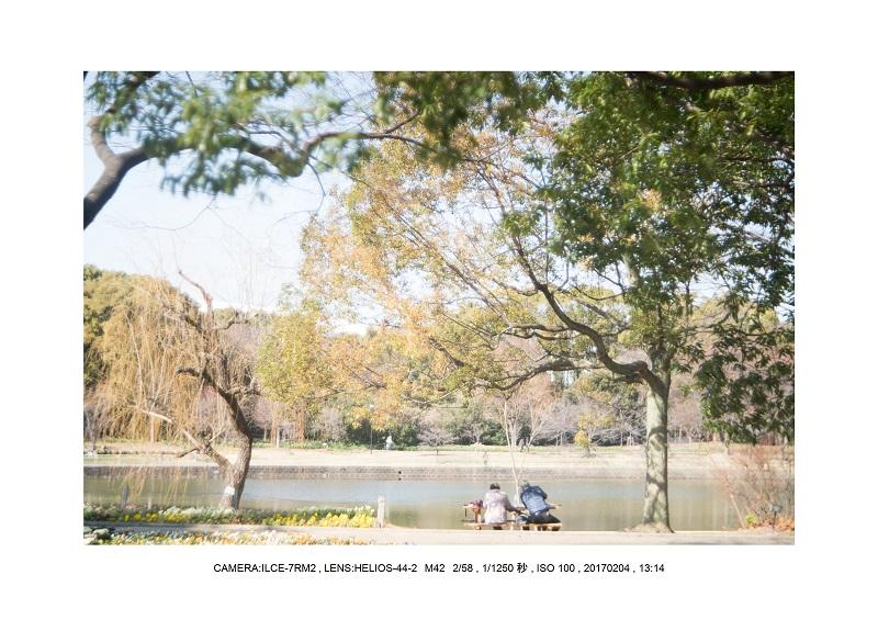 レンズの味を楽しむカメラ散歩長居植物園 Helios-44-2 M42 2 58.jpg