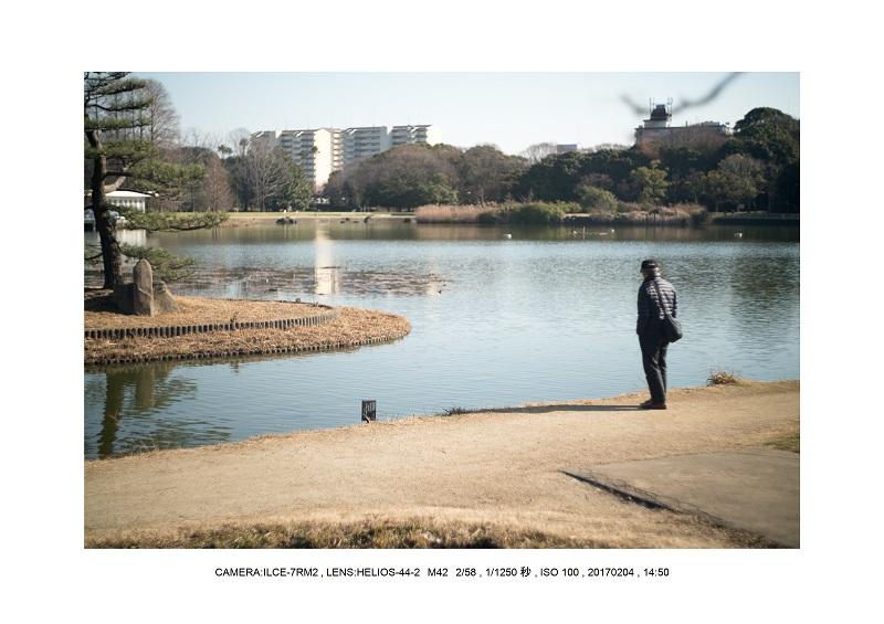 レンズの味を楽しむカメラ散歩長居植物園 Helios-44-2 M42 2 58-11.jpg